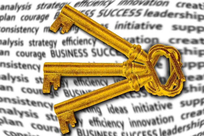 Gouden sleutel voor je succes in je bedrijf of in het leven stock foto's