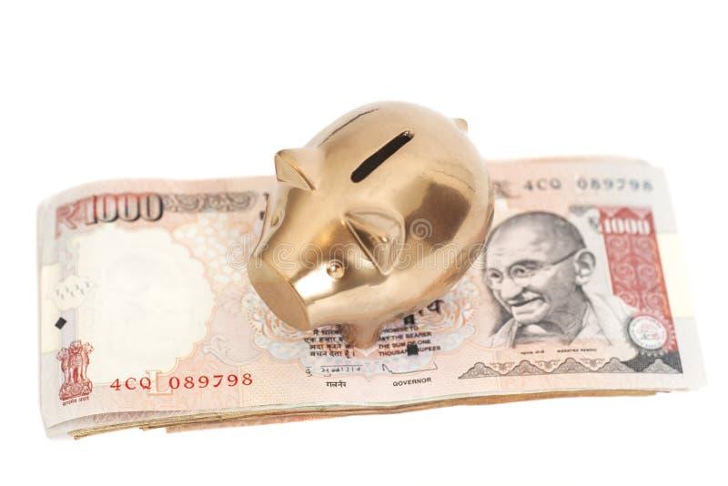 Gouden spaarvarken op Indische Roepie 1000 royalty-vrije stock foto