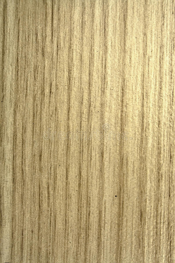 Gouden spar, textuur oud hout stock afbeeldingen