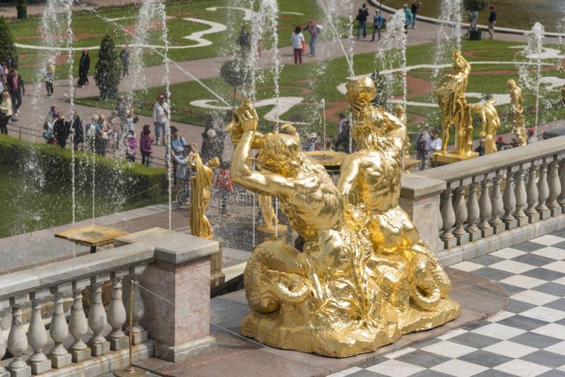Gouden standbeelden van de Grote Cascade in Peterhof-Paleisst. petersburg Rusland stock foto's