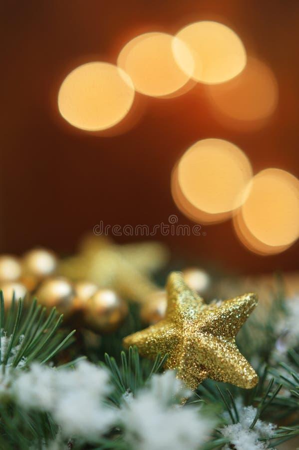 Gouden ster in altijdgroen stock afbeelding