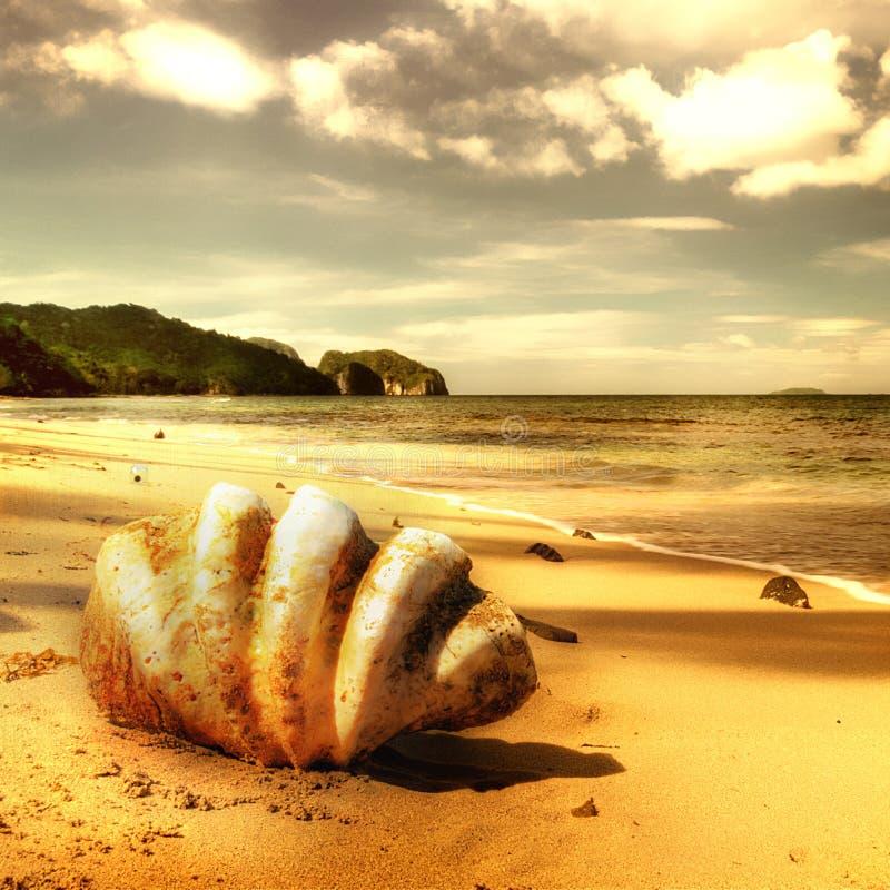 Gouden strand royalty-vrije stock afbeeldingen