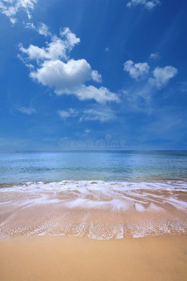 Gouden strand stock foto