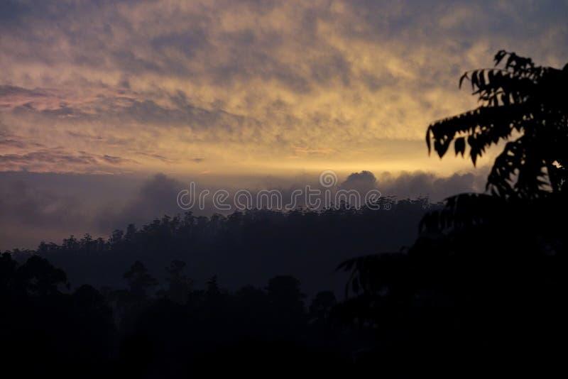 Gouden Tropische Berg Hoogste Zonsondergang stock fotografie