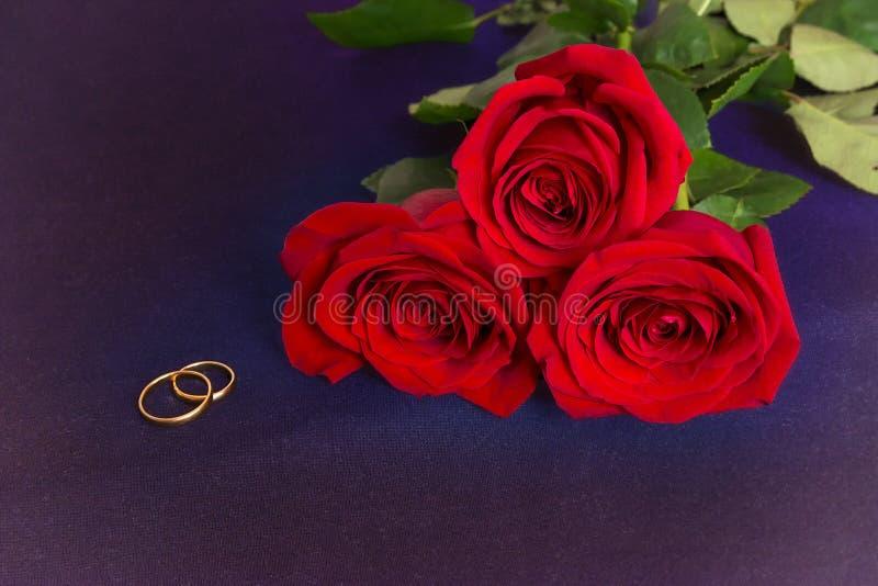 Gouden trouwringen en drie rode rozen op blauwe stof stock foto