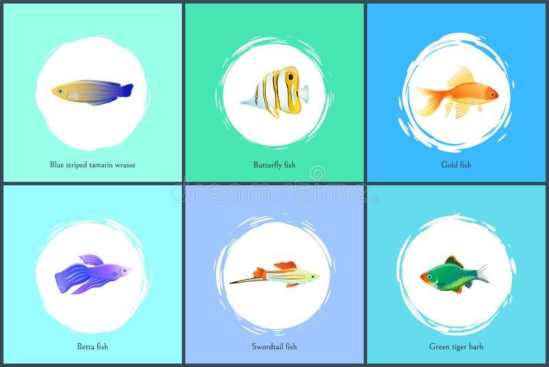 Gouden Vissen en de Blauwe Vastgestelde Vectorillustratie van Tamarin vector illustratie