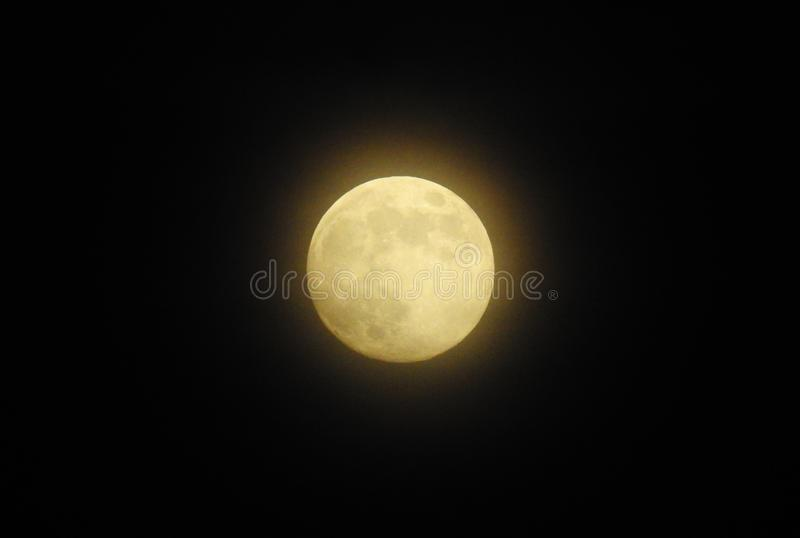 Gouden Volle maan stock fotografie