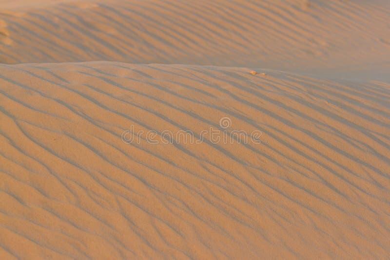 Gouden woestijn in de zonsondergang De textuur van het zand royalty-vrije stock foto's