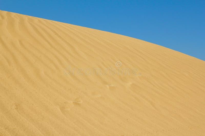 Gouden zandduin stock afbeelding