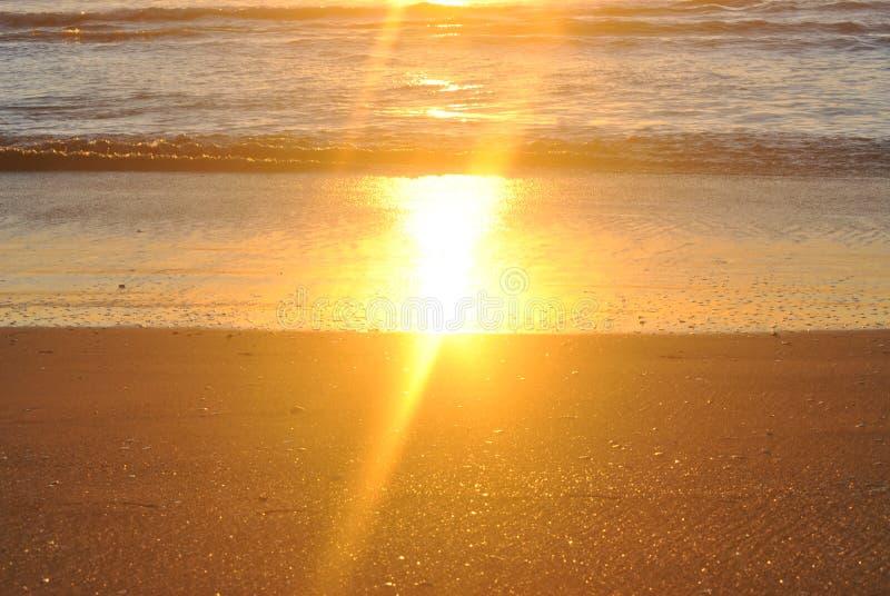 Gouden zon die van nat zand nadenken stock afbeeldingen