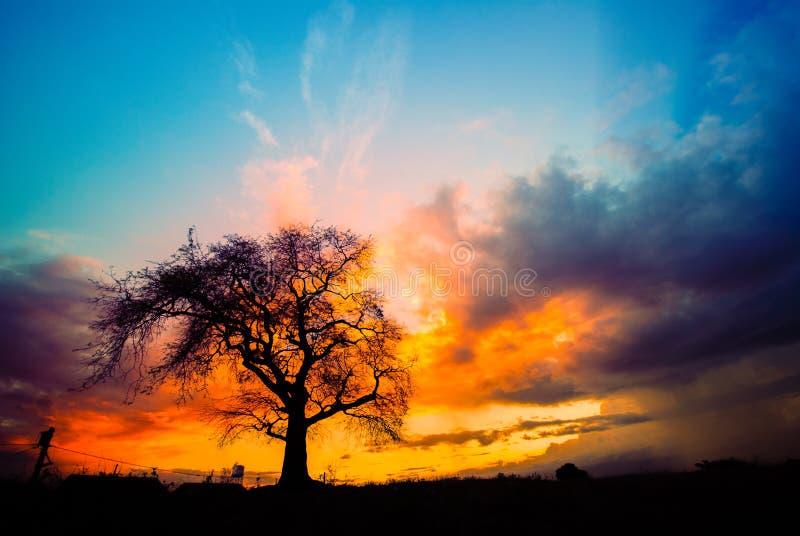 Gouden zonsondergang bij het dorp royalty-vrije stock afbeelding