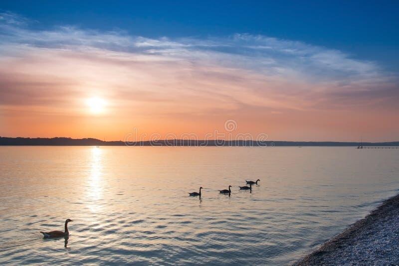 Gouden zonsondergang op strand royalty-vrije stock afbeelding