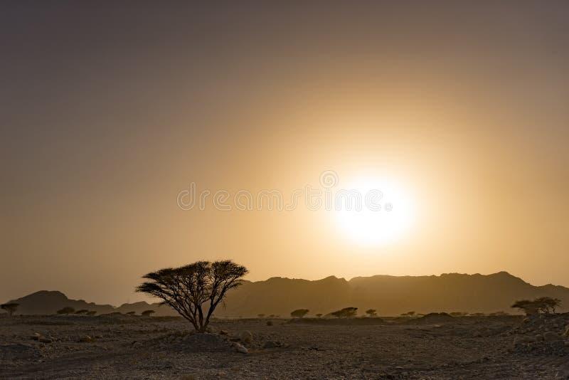 Gouden zonsondergang over de bergen in de wilde woestijn royalty-vrije stock afbeeldingen