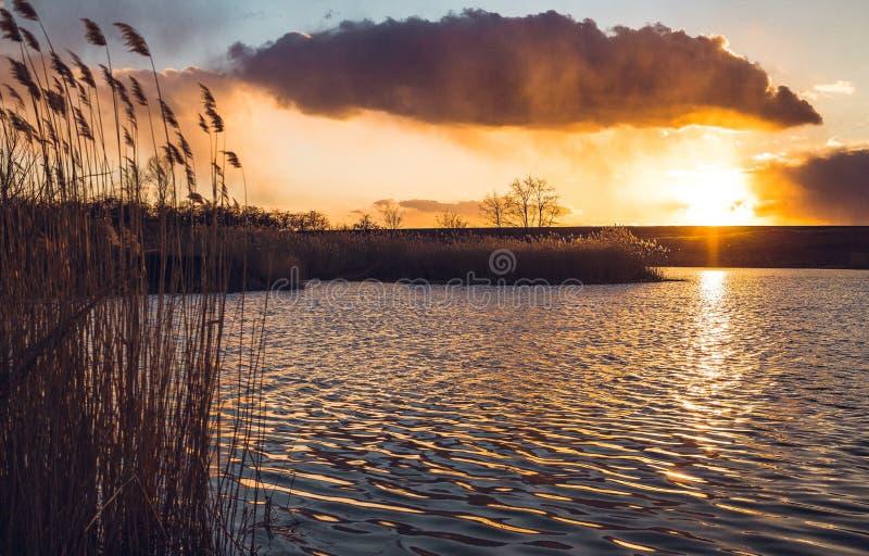 Gouden zonsondergang over het meer in de vroege lente stock foto's