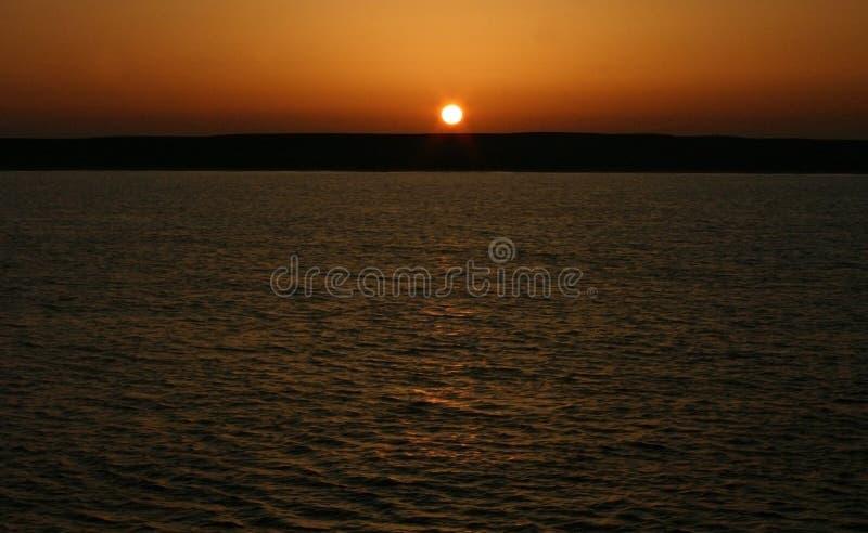 Gouden zonsondergang over het overzees en de vliegende vogel stock afbeeldingen