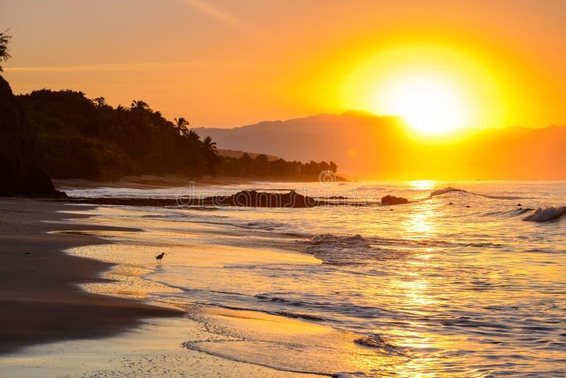 Gouden zonsondergang/zonsopgangoever 2 stock foto's