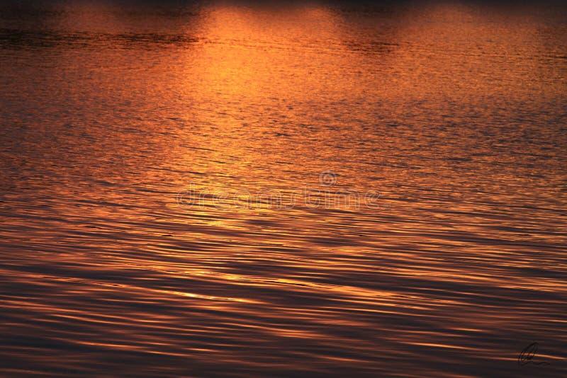 Gouden Zonsondergangsamenvatting stock afbeeldingen