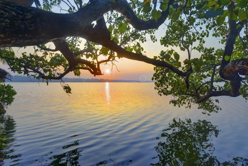 Gouden zonsopgang royalty-vrije stock afbeelding