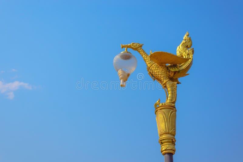 Gouden zwaanlamp royalty-vrije stock afbeeldingen
