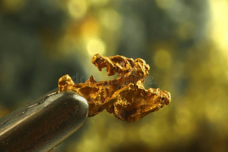Goudklompje van goud stock foto's