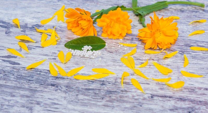 Goudsbloemen, druppeltjes, homeopathie stock fotografie
