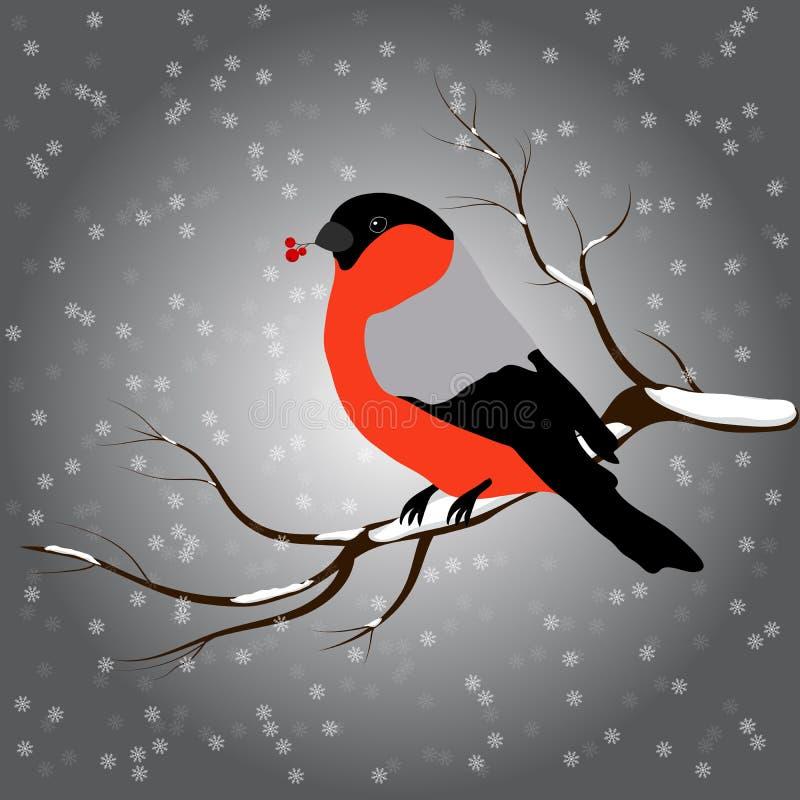 Goudvinkzitting op tak met een takje van Lijsterbes in zijn bek, sneeuwval De winter of Kerstmis vectorillustratie royalty-vrije illustratie