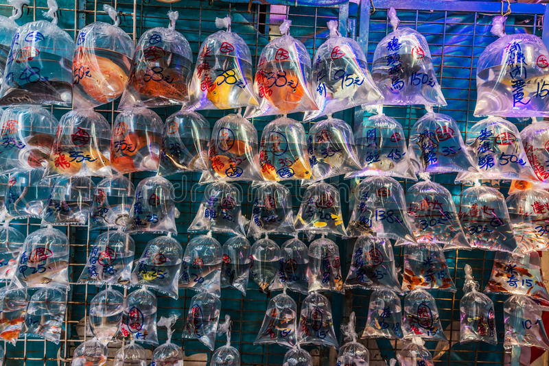 Goudvismarkt Mong Kok Kowloon Hong Kong stock fotografie