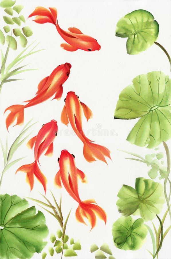 Goudvissen onder de lotusbloembladeren royalty-vrije illustratie
