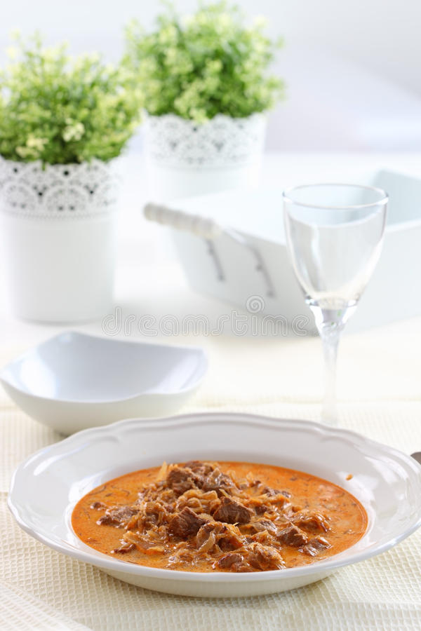 Goulash di Segedin fotografia stock