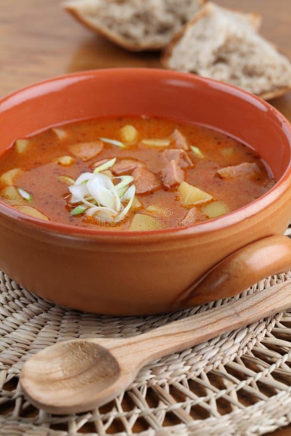 Download Goulash soup stock image. Image of tasty, dinner, meal - 18165823