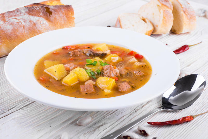 Goulash ungherese immagine stock