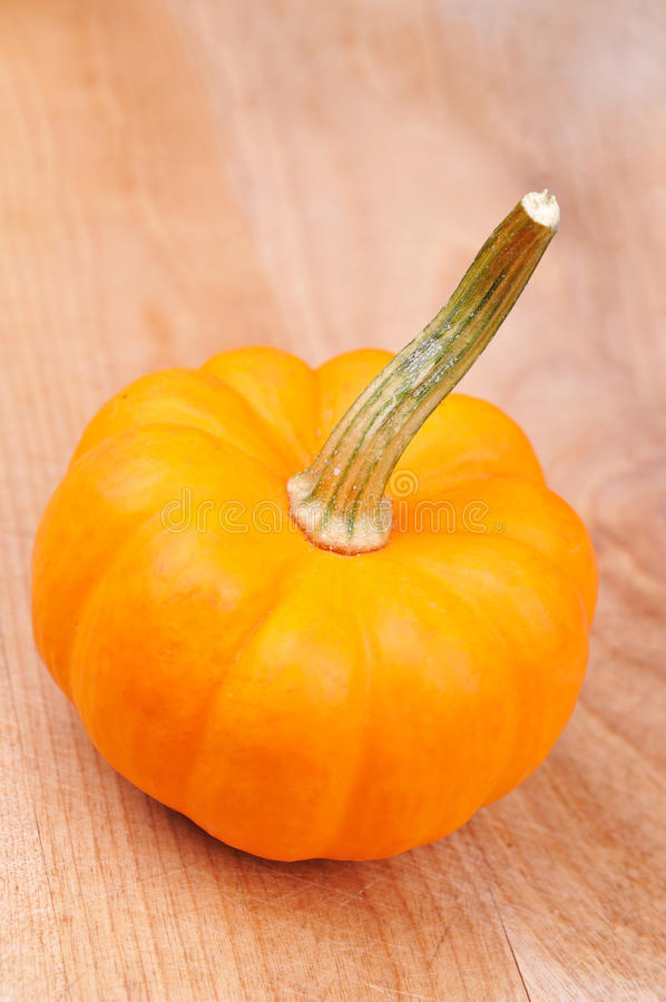 Download Gourd Stock Photography - Image: 11217552