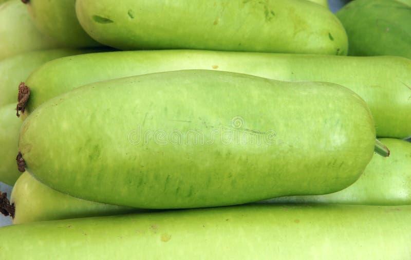 Download Gourd stock image. Image of closeup, vegetables, harvest - 26369067