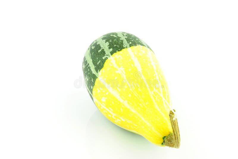 Gourd fotografia de stock