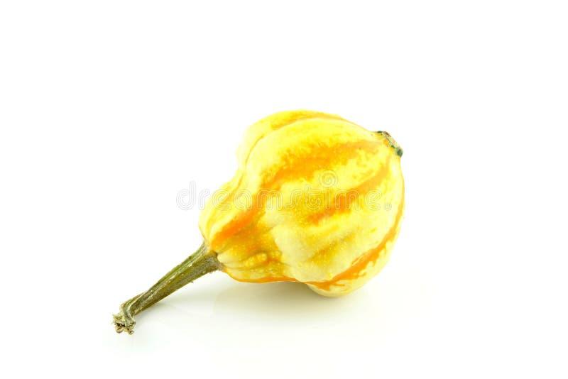 Gourd fotos de stock