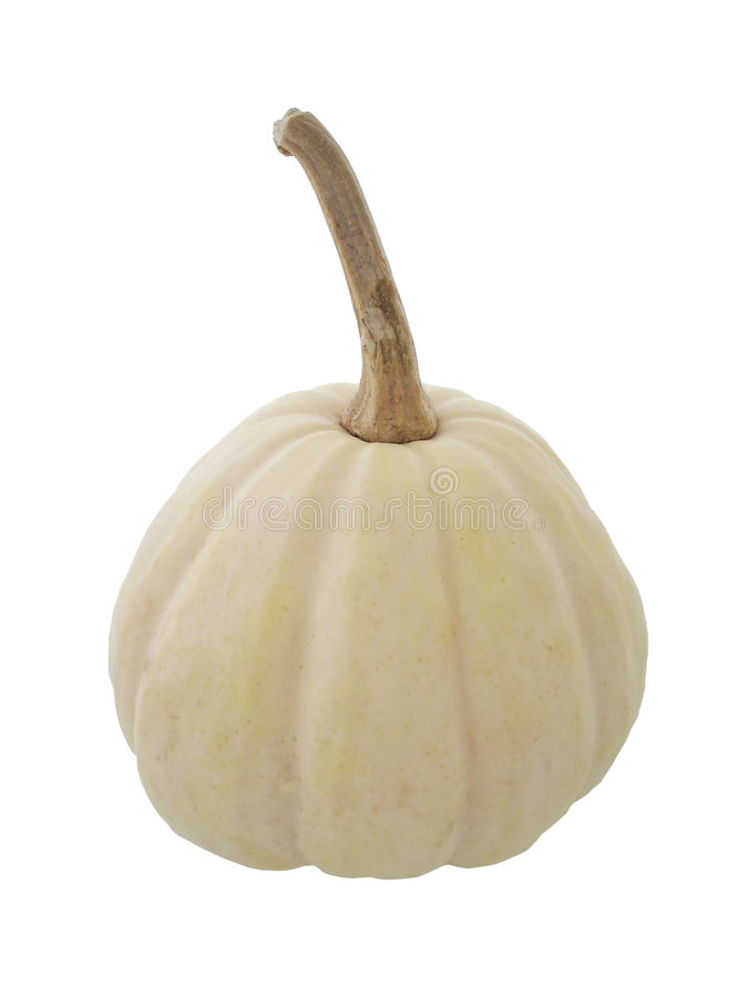 Gourd imagens de stock royalty free