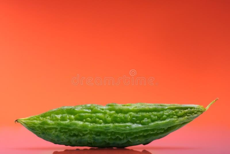 Gourd amargo foto de stock