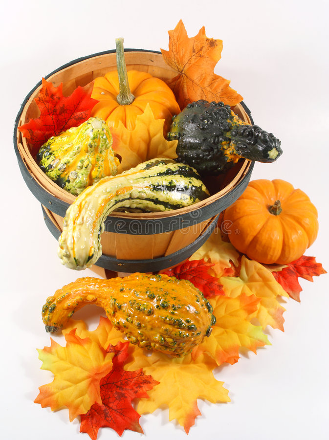 Gourd bucket for autumn seaso royalty free stock photography