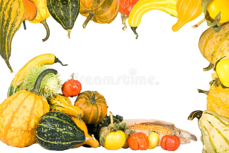 Gourd and squash frame. Border frame made of a thanksgiving basket and gourds stock photography