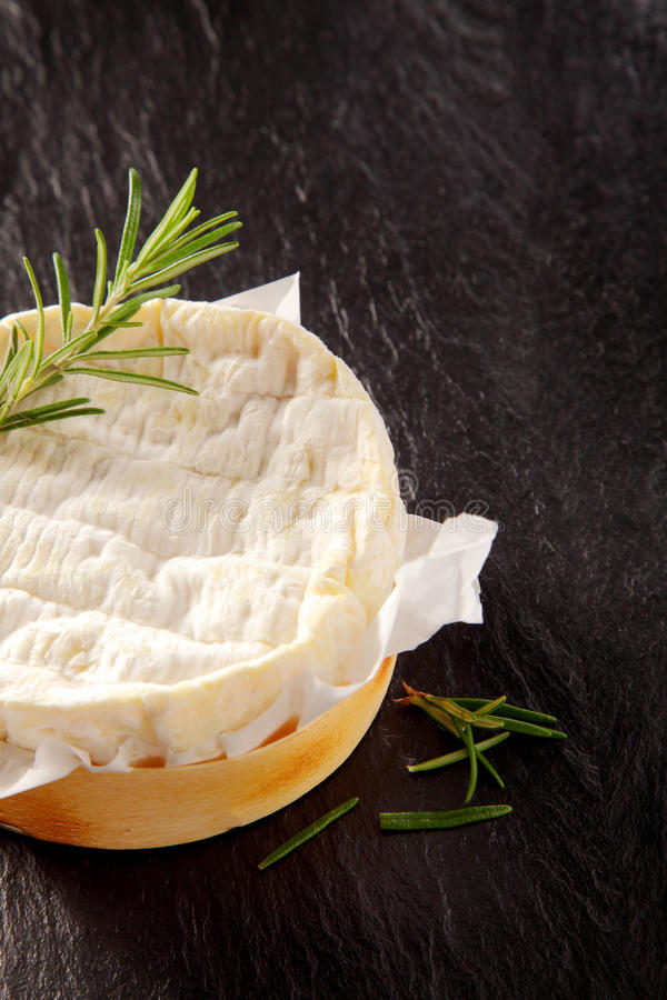 Gourmet Aged Cheese Round with Fresh Herbs stock photo
