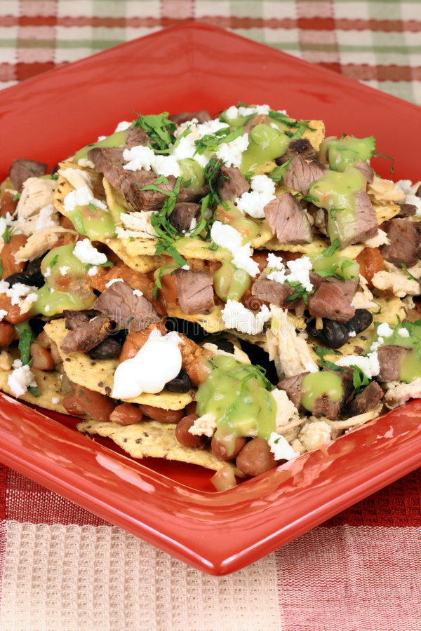Download Gourmet beef nachos stock image. Image of meal, gallo - 6000321