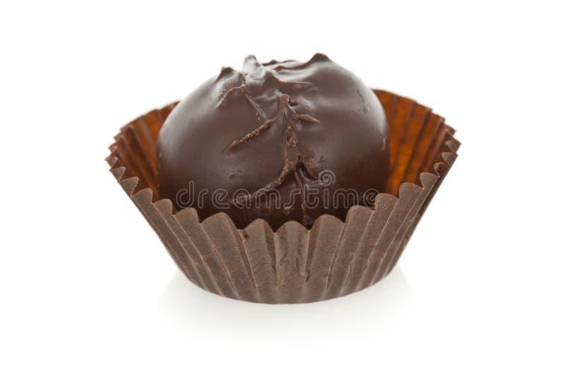 Gourmet- chokladtryffel som isoleras på vit backgr arkivbild