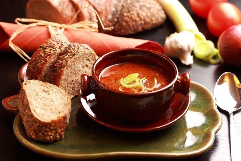 Gourmet- goulashsoup arkivbild