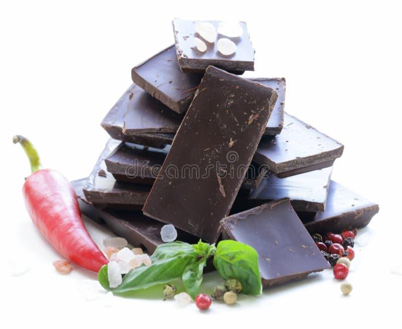Gourmet- mörk choklad med chilipeppar, salt hav royaltyfria foton