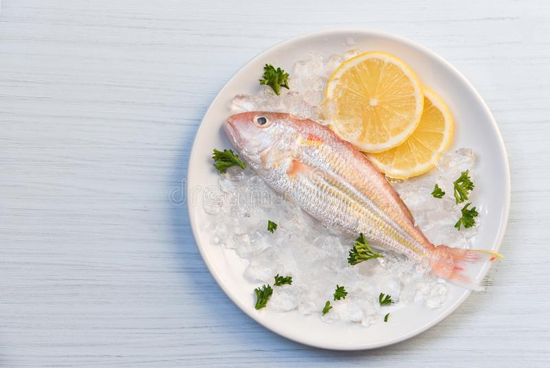 Gourmet- ny fisk för havs- hav för fiskplatta på iscitronpersilja på den vita plattatabellen royaltyfri fotografi