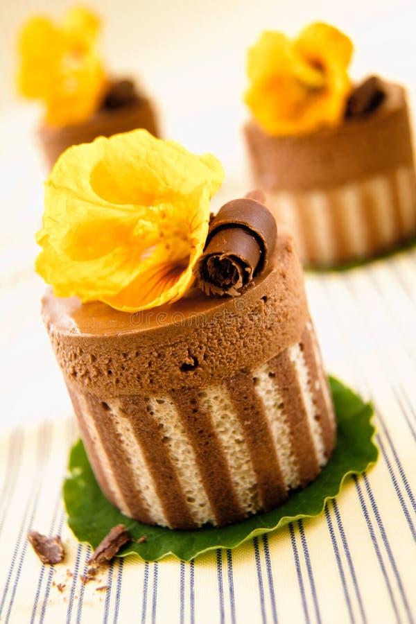 gourmet- rich för chokladefterrätter royaltyfria foton