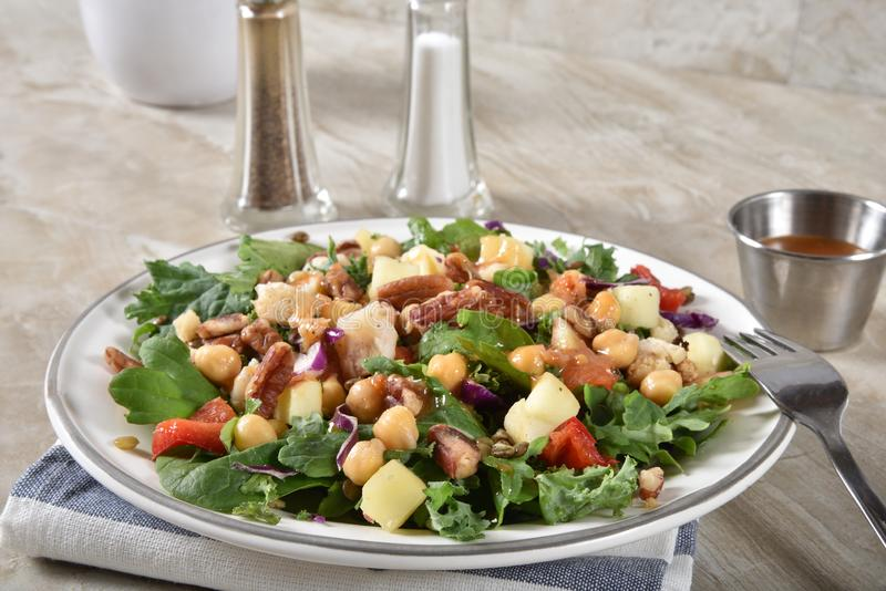 Gourmet spinach legume salad royalty free stock image