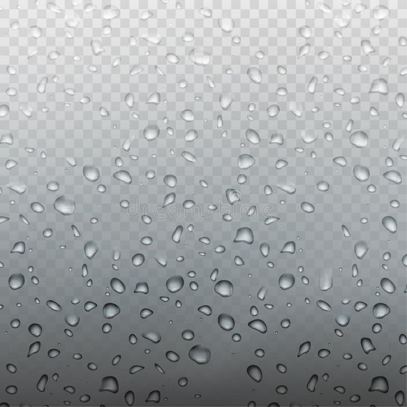 Gouttelettes d'eau réalistes de vecteur de pluie courante d'illustration sur le verre d'isolement sur un fond à carreaux transpar illustration libre de droits