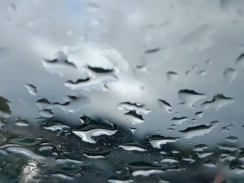 Gouttelettes de pluie photos stock