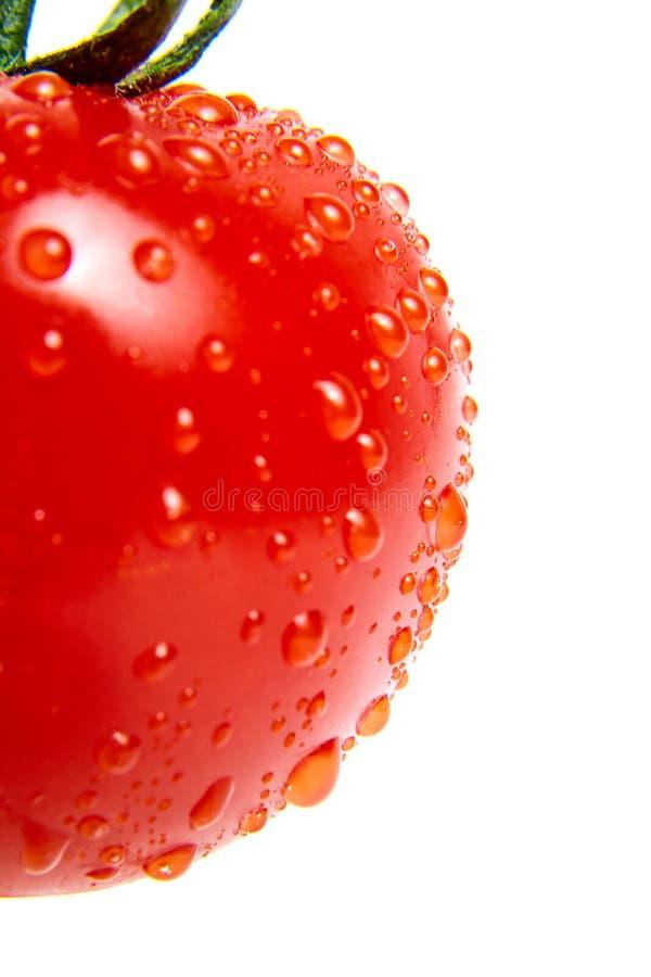 Gouttes de l'eau sur la surface de la tomate mûre rouge closeup Macro O image stock